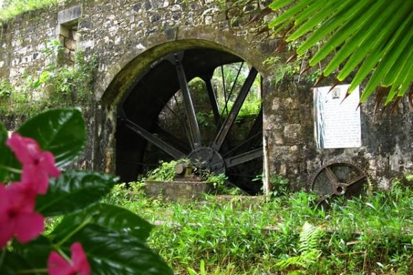 Jamaica Good Hope Estate. TheSceneinTO.