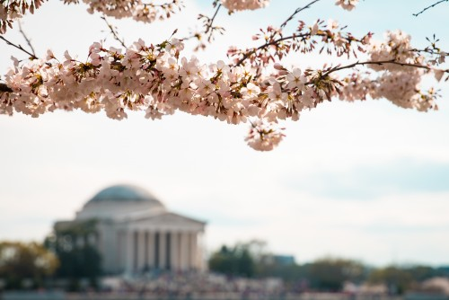 Washington Unsplash Ashton Bingham. The SceneinTO.com The Scene inTOThe Top Five East Coast Cities To Visit this Summer