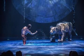 Cirque du Soleil Luzia.