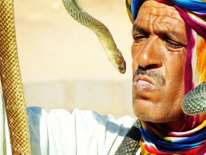 Morocco Snake Charmer Carter H.